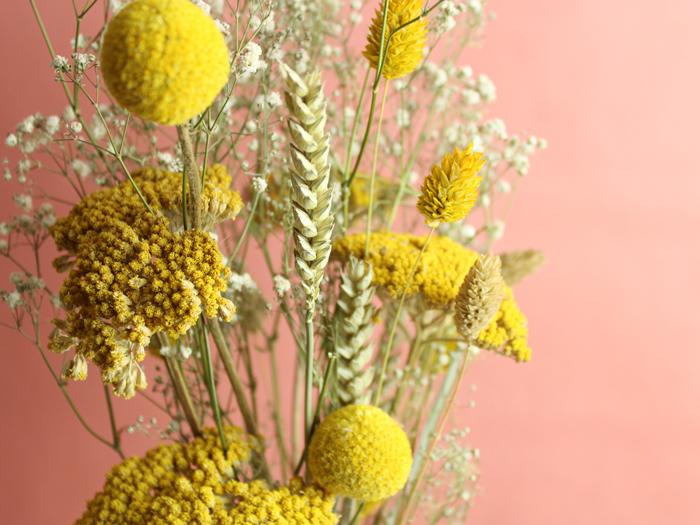 Trockenblumen erleben ihr Comeback
